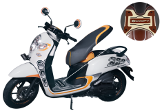 newscoopy-details-rsf