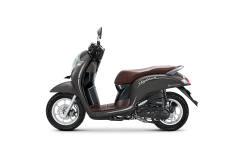 SCOOPY 2019_STYLISH MATTE BROWN